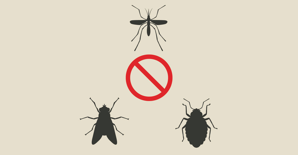 Come eliminare mosche, zanzare e scarafaggi dal tuo locale